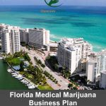 Florida Medical Marijuana Application Business Plans